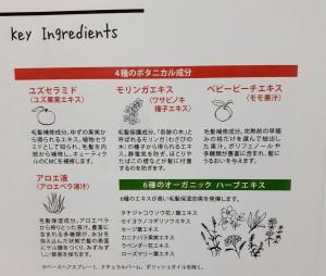 島田ブログ3